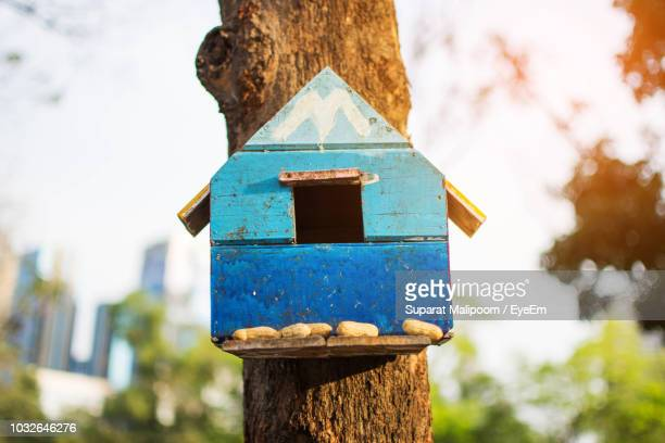 close-up of birdhouse - birdhouse stock pictures, royalty-free photos & images