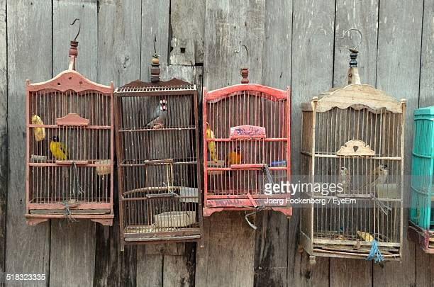 Close-up Of Birds In Cages