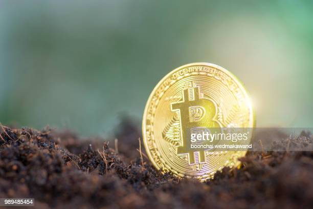 Close-Up Of Bitcoin Against Binary Code