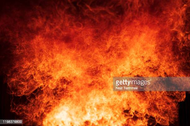 close-up of blaze fire flame at night. - hell stock pictures, royalty-free photos & images