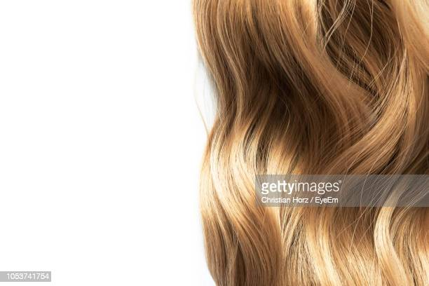 close-up of blond hair against white background - cheveux blonds photos et images de collection