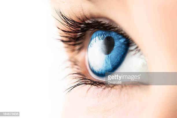 close-up of blue eye with lashes - blue eyes stock pictures, royalty-free photos & images