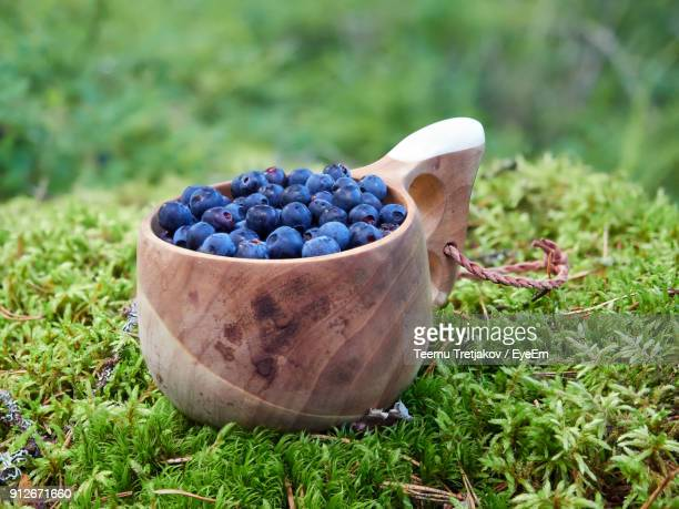close-up of blueberries in basket on grass - teemu tretjakov stock pictures, royalty-free photos & images