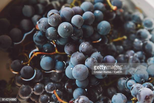 close-up of blueberries - bortes stock pictures, royalty-free photos & images
