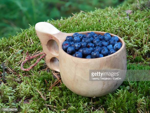 Close-Up Of Blueberry Fruits In Wooden Mug On Grass In Field