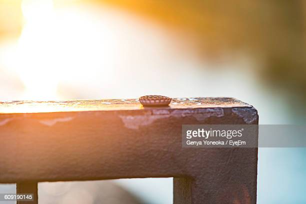 Close-Up Of Bottle Cap On Fence Against Sky