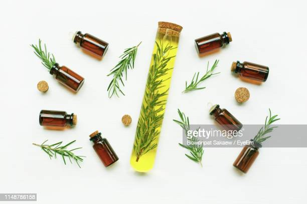 close-up of bottles and leaves over white background - essential oil stock pictures, royalty-free photos & images