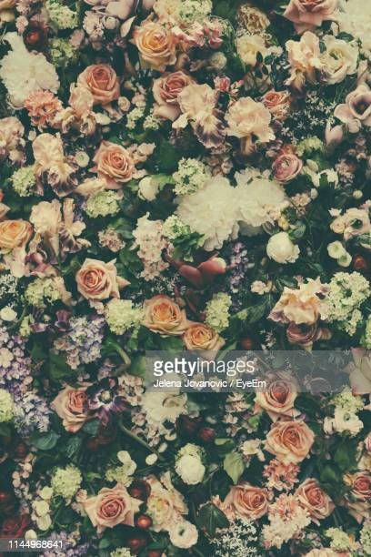 close-up of bouquet - wedding background stock pictures, royalty-free photos & images