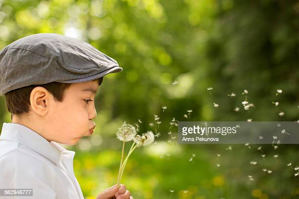 Close-up of boy blowing out dandelions
