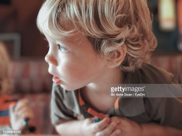 close-up of boy looking away - brianne stock pictures, royalty-free photos & images