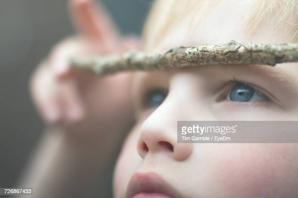 Close-Up Of Boy With Stick On Head