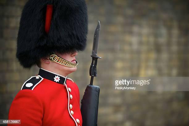b452e0d8d70 Close-Up of British Royal Foot Guard with Bayonet London