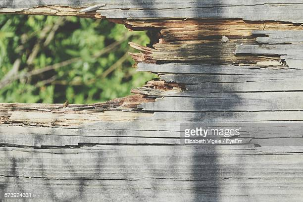 Close-Up Of Broken Wooden Fence