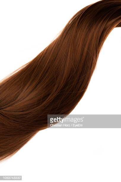 close-up of brown hair against white background - brown hair photos et images de collection