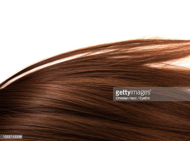 close-up of brown hair against white background - straight hair stock pictures, royalty-free photos & images