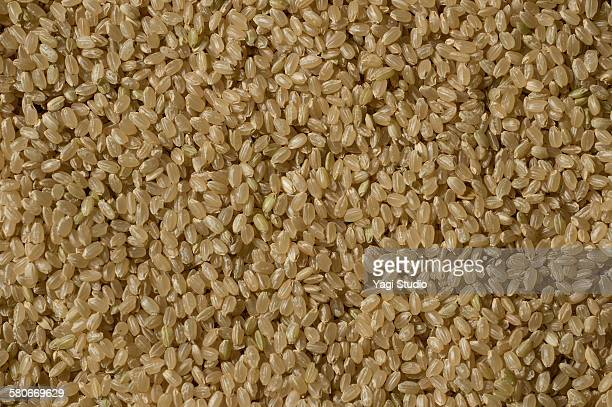 Close-up of brown rice