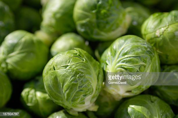 Close-up of Brussels Sprouts in Shipping Crate