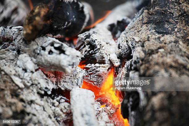 Close-up of burnt ashes