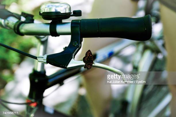 Close-Up Of Butterfly On Bicycle