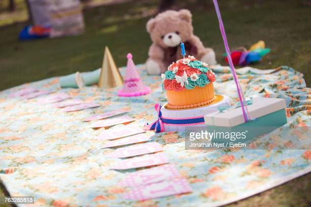 Close Up Of Cakes And Teddy Bear On Blanket At Yard During Birthday Party
