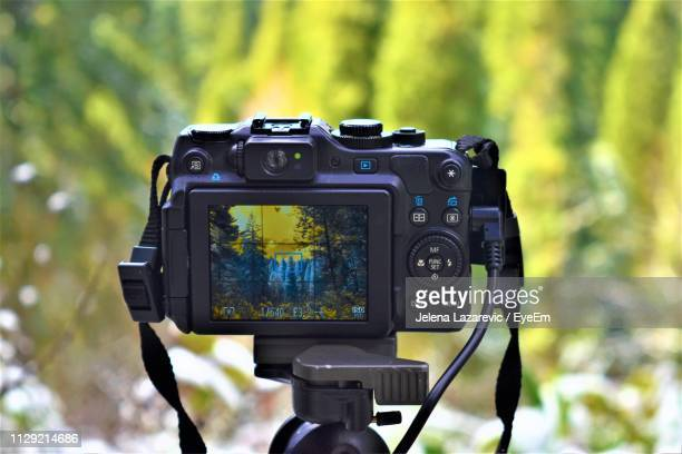 close-up of camera against trees - digital camera stock pictures, royalty-free photos & images