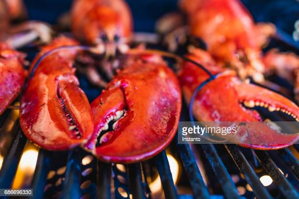 gros plan du homard canadien griller sur le barbecue. - homard photos et images de collection