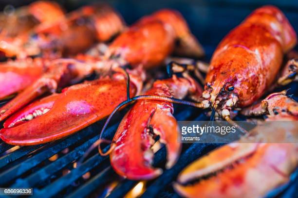 close-up of canadian lobsters grilling on the barbecue. - canadian culture stock pictures, royalty-free photos & images