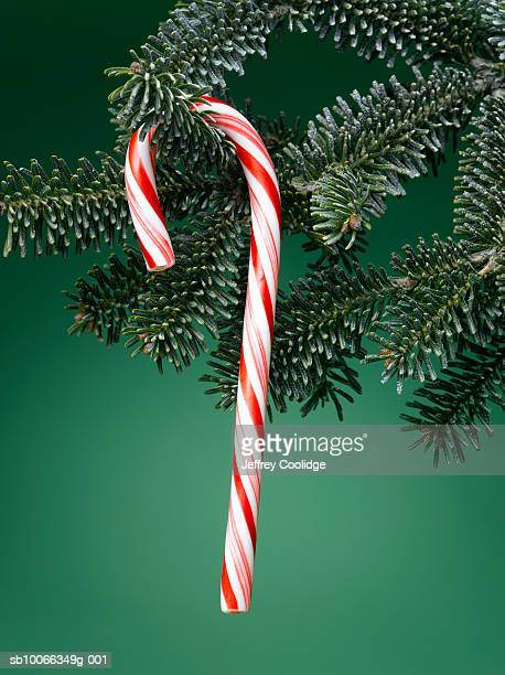Close-up of candy cane hanging from Christmas tree, green background