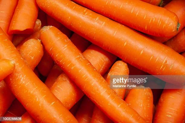close-up of carrots - carrot stock pictures, royalty-free photos & images