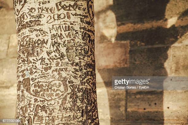 close-up of carved tree trunk against wall - bortes stock pictures, royalty-free photos & images