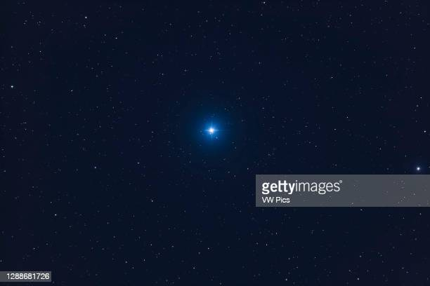Closeup of Castor in Gemini, taken in moonlight, with the 130mm f/6 apo refractor. While this is a double star the separation is too tight for the...