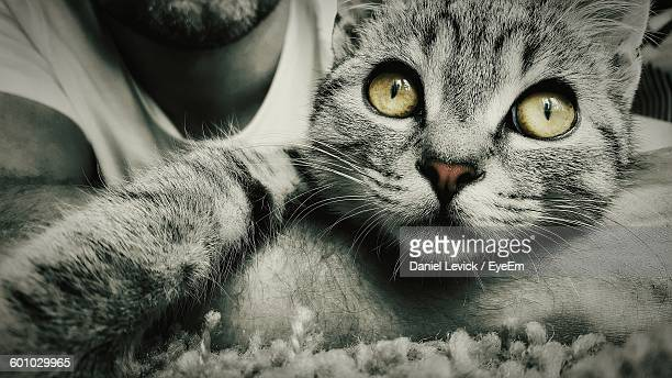 Close-Up Of Cat With Man At Home
