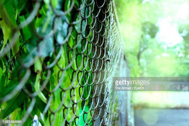 Close-Up Of Chainlink Fence In Sunny Day