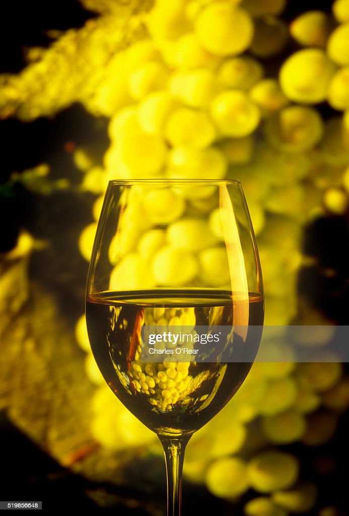 Close-up of Chardonnay in Wine Glass and Grapes : Stock Photo