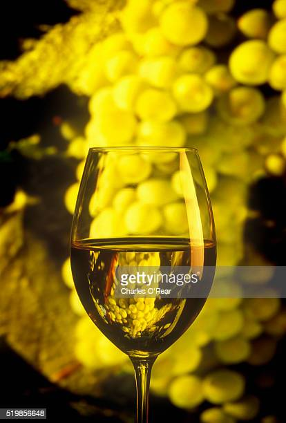 close-up of chardonnay in wine glass and grapes - chardonnay grape stock photos and pictures