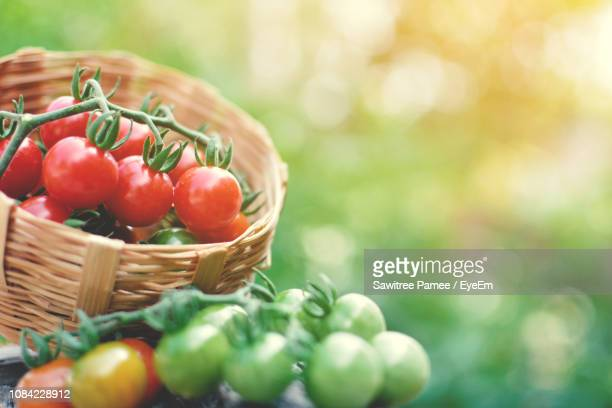 Close-Up Of Cherry Tomatoes In Basket Outdoors
