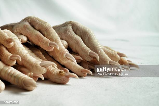 Close-Up Of Chicken Feet On Table