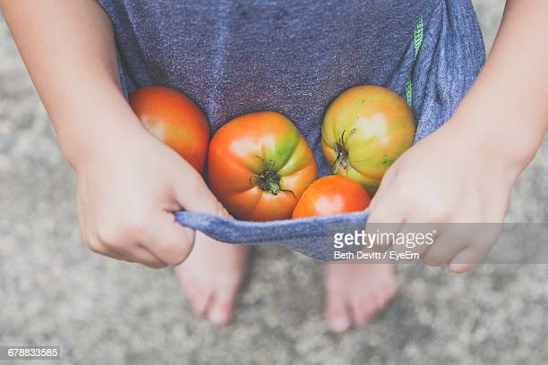 Close-Up Of Child Carrying Harvested Tomatoes