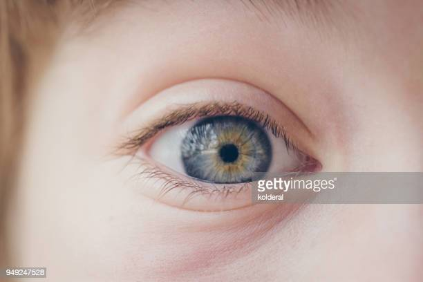 Close-up of child eye