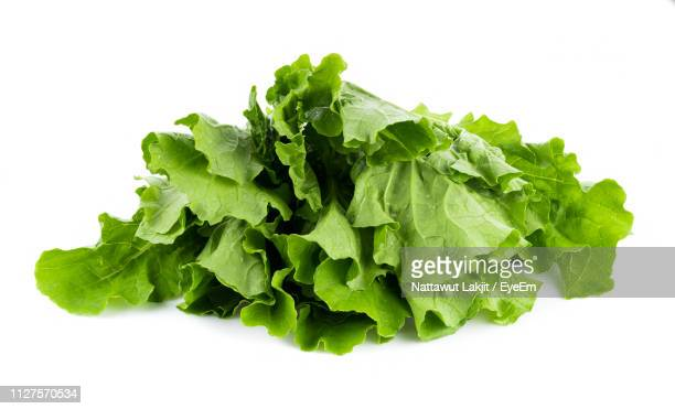 Close-Up Of Chinese Cabbage Over White Background