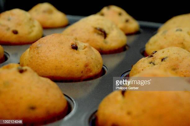 close-up of chocolate chip muffins - チョコレートチップマフィン ストックフォトと画像