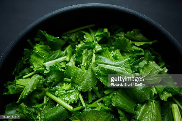 close-up of chopped turnip leaves in bowl - turnip stock pictures, royalty-free photos & images