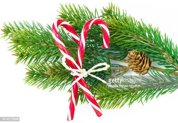 close-up of christmas decorations against white background - angela rohde stock-fotos und bilder