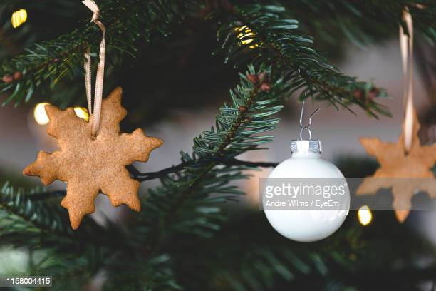 close-up of christmas decorations hanging on tree - andre wilms eyeem stock-fotos und bilder