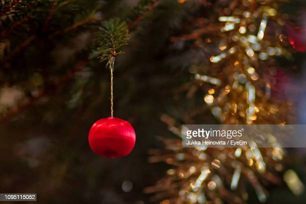 close-up of christmas tree - heinovirta stock photos and pictures