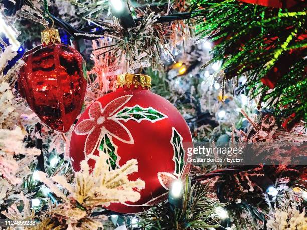 close-up of christmas tree - bortes stock pictures, royalty-free photos & images