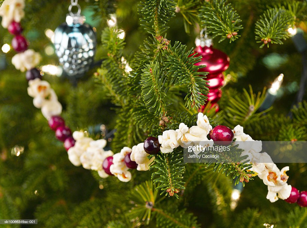 60 Top Popcorn Garland Pictures Photos Images Getty Images