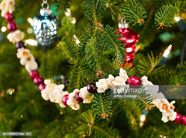 close-up of christmas tree with popcorn-cranberry garland - garland stock pictures, royalty-free photos & images