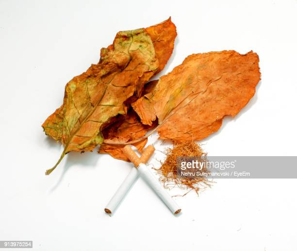 Close-Up Of Cigarette On Dry Leaf Over White Background
