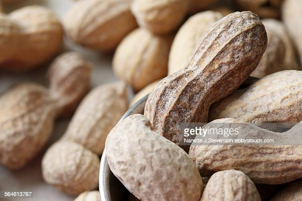 close-up of closed peanuts - nanette j stevenson stock photos and pictures